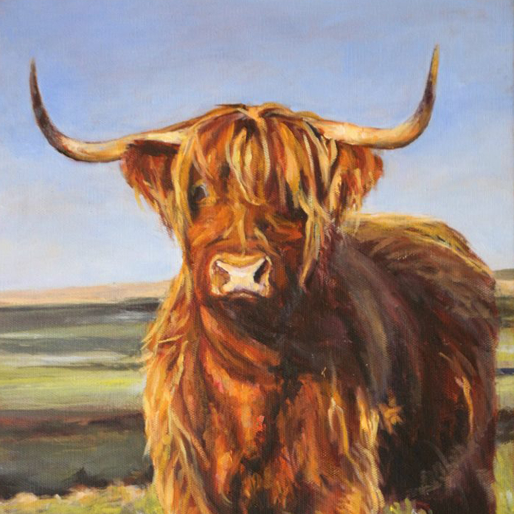 slider-Highland Cow