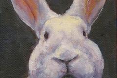 9338-Rabbit-4-4x5