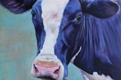 clover-cow